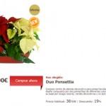 comprar flores de pascua baratas por internet