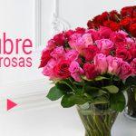 Regalar rosas para el dia de la madre