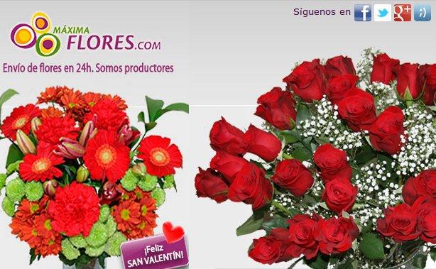 Orqu Deas Blancas La Flor M S Deseada A Los Mejores Precios