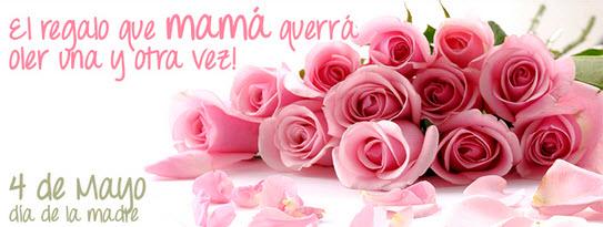 flores para el dia de la madre 2014 de ultima hora