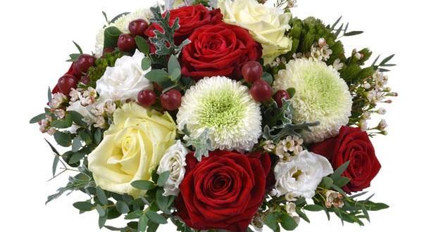 flores de navidad baratas a domicilio 3 propuestas originales On plantas a domicilio baratas