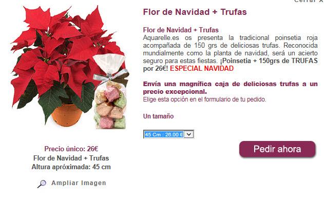 flores de pascua donde comprar