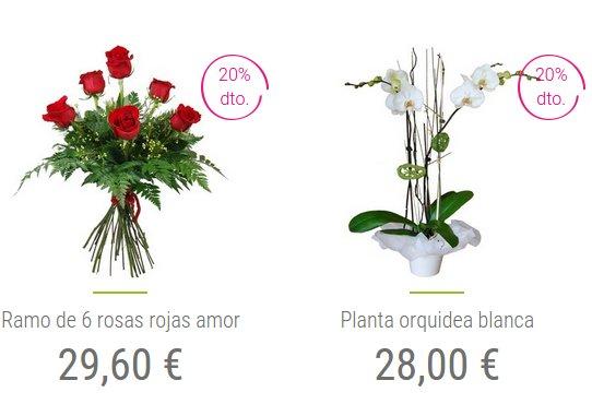 flores d a de la madre 2015 baratas online y a domicilio On plantas a domicilio baratas