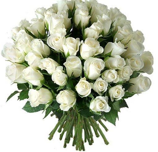 Ramos de novia rosas blancas baratas