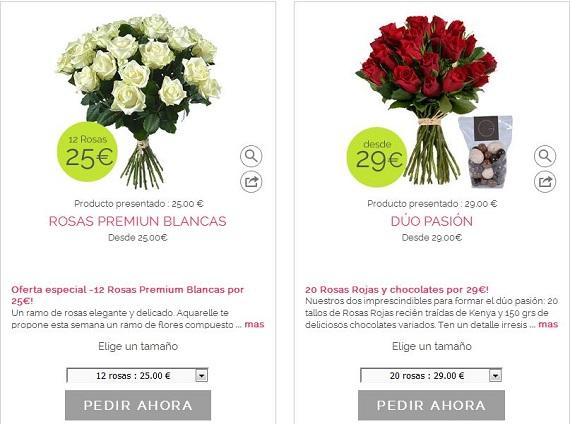 Aquarell ramos de rosas