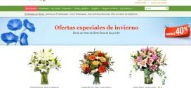 Flores de invierno de interior y de exterior: precios a examen