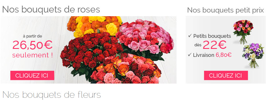 enviar flores a francia
