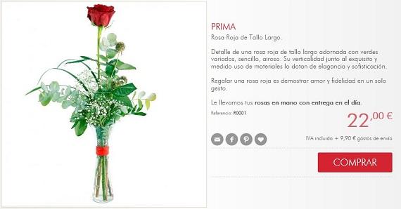 rosas Sant Jordi para regalar