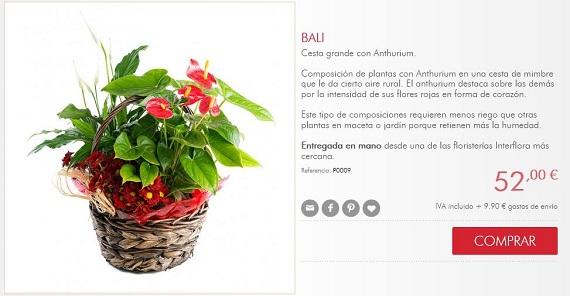 interflora plantas