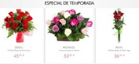 Flores del dia de todos los santos online, baratas y a domicilio