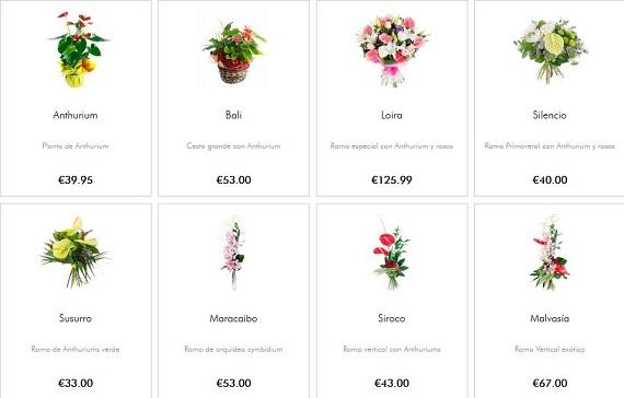 comprar-flores-tropicales