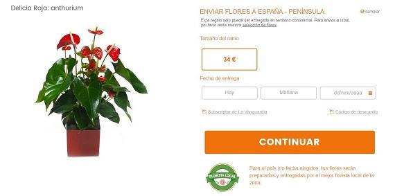flores-tropicales-baratas