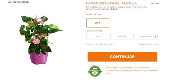 flores-tropicales-cuidados