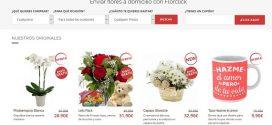 Opiniones de Florclick: comentarios de las cestas y centros de plantas