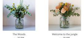 Flores para hospitales online: por maternidad o por enfermedad