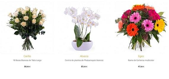 Flores Para Jubilaci N Baratas Y Online Ramos Y Centros