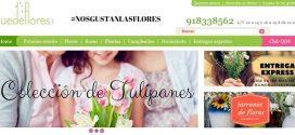 Quedeflores: opiniones y precios de las ofertas en plantas y rosas