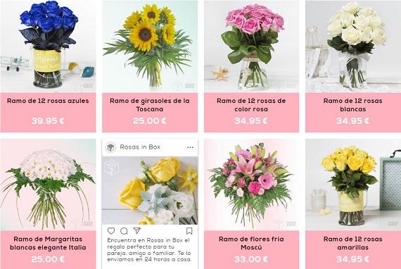 rosas in box ofertas